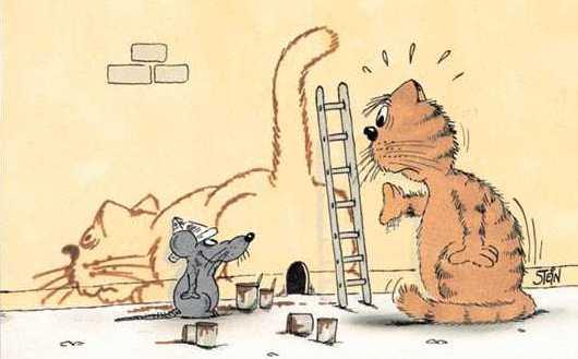"""Résultat de recherche d'images pour """"humour animaux dessin"""""""